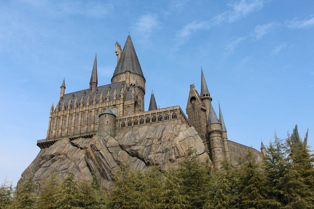 Phänomen Harry Potter in den Köpfen der Jugend